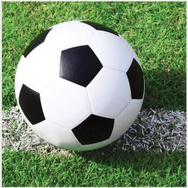 18 Serviettes Football 25 cm