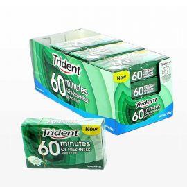 Chewing-gum Trident 60 Minutes Menthe Poivrée 16 sachets