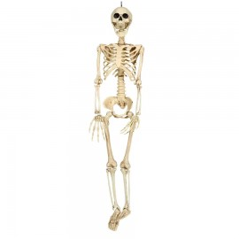 Squelette 90 cm