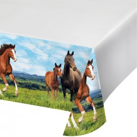 Nappe Cheval et Poney