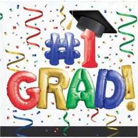 16 Serviettes de Graduation Colorées 25 Cm