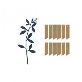 Branches avec Etiquettes et Cordes Décoratives