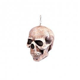 Crâne avec Chaîne