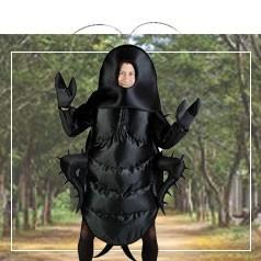 Déguisements d'Insecte