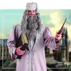 Déguisements Dumbledore
