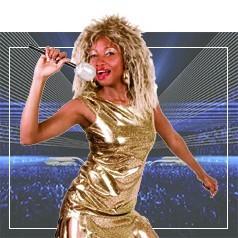 Déguisements de Tina Turner