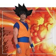 Déguisements de Goku