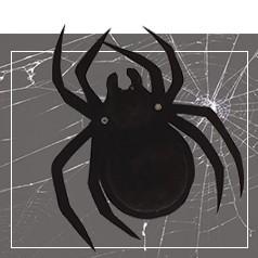 Toiles d'Araignée Halloween